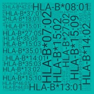 HLA-B